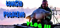 Prosto z Bivvy - Vlog 3 - Łowisko Pogalewo