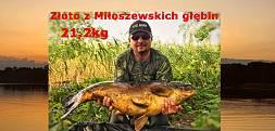 Złoto z Miłoszewskich głębin - karp 21,2kg