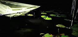 Nocne zasiadki na PZW czyli jak szukałem karpi i amurów