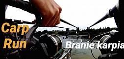 Branie Karpia Carp Run Compilation