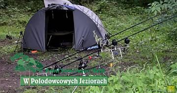 Karpiowe wędrówki w polodowcowych jeziorach PZW