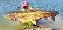 2,5 doby na Eko Farmie, a efekt to 20 ryb