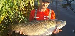 Amur z Gosławic  25kg