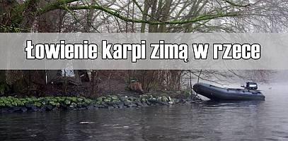 Łowienie karpi zimą w rzece - poradnik