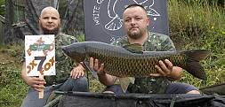 Konszachty z Foxem 2018 – pierwsze ryby na matach