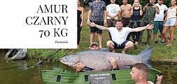 W Rumunii złowiono amura czarnego o wadze 70 kg