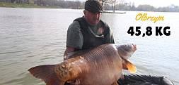 45,8 kg z Węgier
