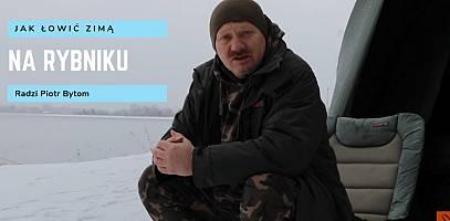 Jak łowić zimą karpie na zbiorniku elektrowni Rybnik? Poradnik