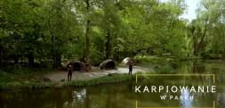 Karpiowanie w Poznaniu – zobaczcie nowy film Foxa