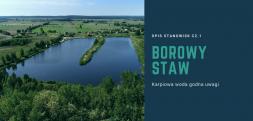 Łowisko Borowy Staw - opis stanowisk cz.1