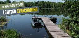 Łowisko Strachomino (Jezioro Ustroń) – tu warto się wybrać na karpie