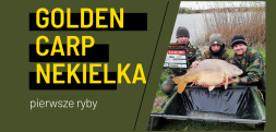 Golden Carp Nekielka – pierwsze ryby na matach
