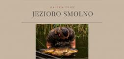 Jezioro Smolno – Galeria karpi
