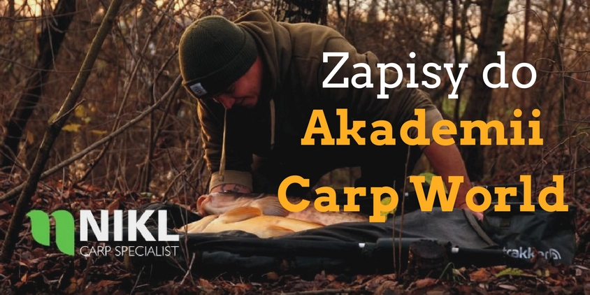 Nabór do Akademii Carp World